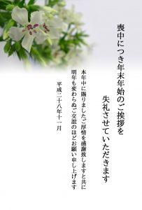 h_motyu06_2_11